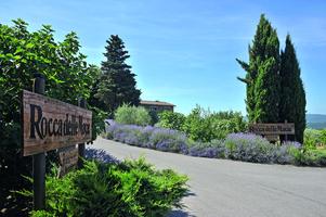 Rocca delle Macie, günstig im Weinhandel Regenbogen